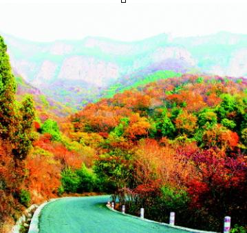 青岛茶山风景区门票由60元降至50元